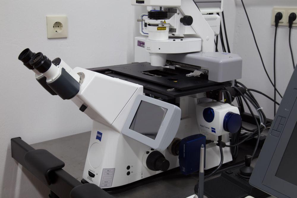 Willkommen auf den seiten der zentralen mikroskopie u2014 deutsch